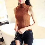 Knitted Turtle Neck Top Brown